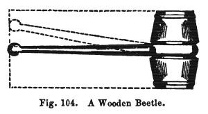 beetle_1859