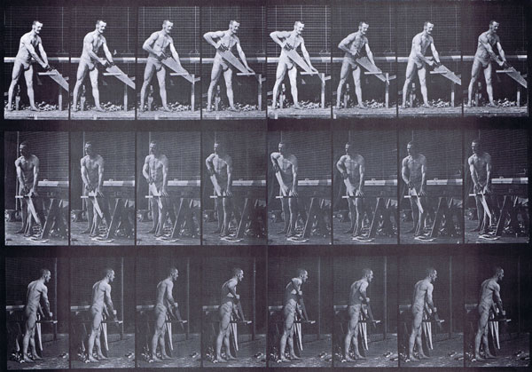 muybridge_plate_380_small
