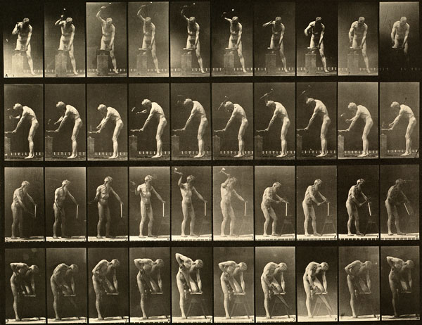 muybridge_plate_491_small