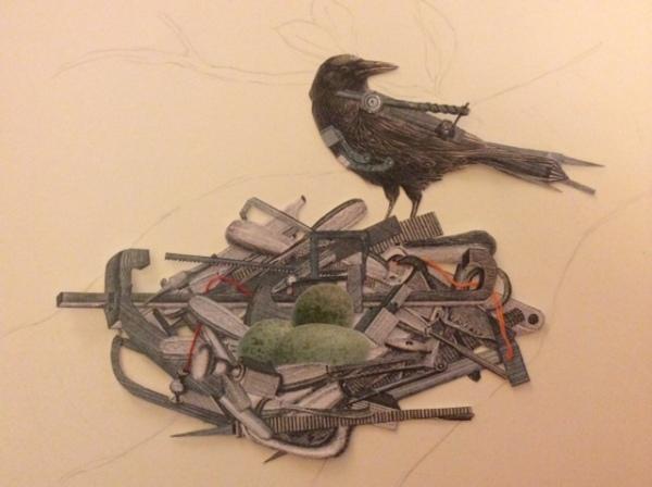crow_eggs