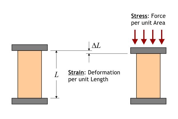 stressesAndStrains1