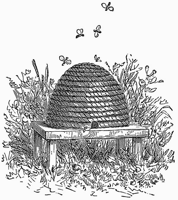 vintage beehive victorian