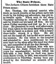 Detroit_Free_Press_Thu__Jun_17__1875_