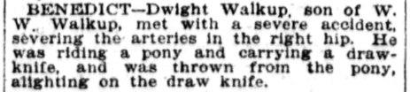 Omaha_Daily_Bee_Mon__Dec_31__1906_