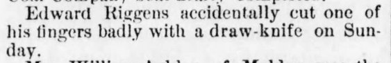 The_Kingston_Daily_Freeman_Wed__Mar_6__1889_