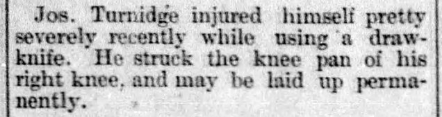 Weekly_Oregon_Statesman_Fri__Jan_29__1886_