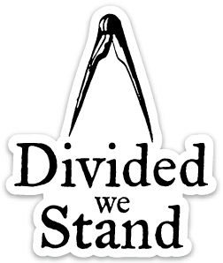 divided_893821