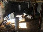 cellar2_img_7210